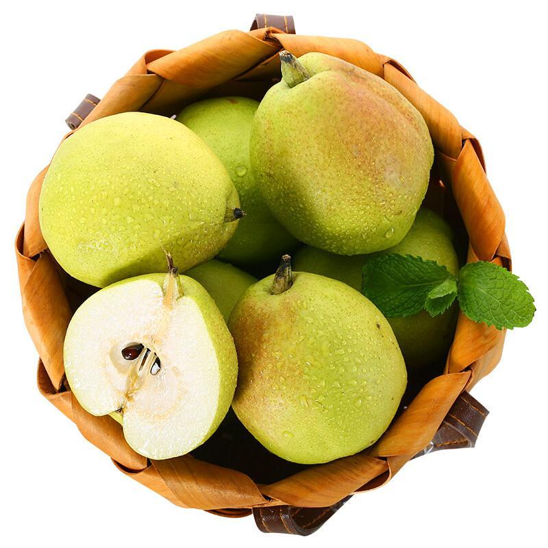 【京东物流满99包邮】新疆库尔勒香梨 精选特级 单果120g以上 净重2.5kg  新鲜水果
