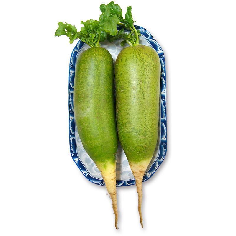 天津沙窝萝卜2.5kg 礼盒装 水果萝卜 新鲜青萝卜 礼盒装 新鲜蔬菜
