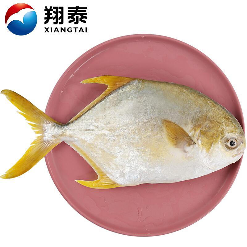翔泰 冷冻无公害金鲳鱼 800g/袋 1条装 大鱼 生鲜 BAP认证全程可追溯 含Ω3