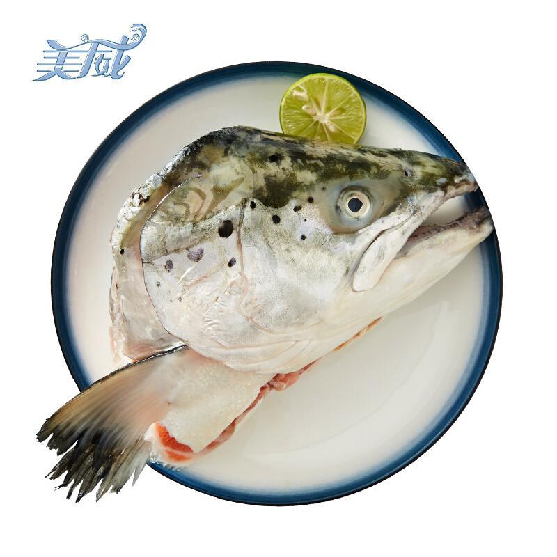 美威 智利三文鱼头分享装(大西洋鲑)1.2-1.5kg 3只/独立装 BAP认证 智利自有渔场直供