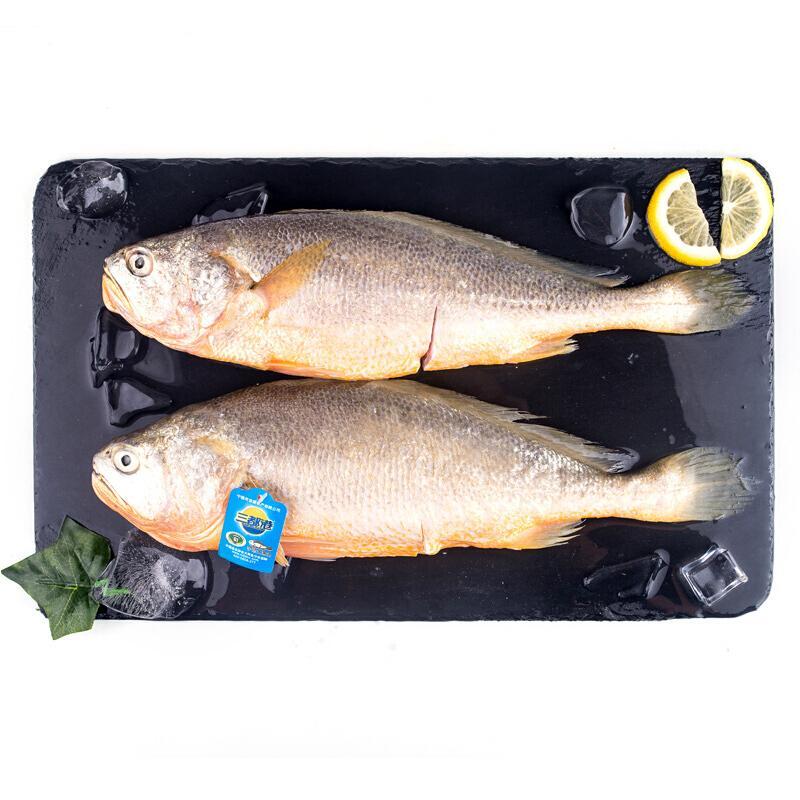 三都港 三去深海宁德大黄花鱼1kg 2条 京东生鲜 海鲜水产