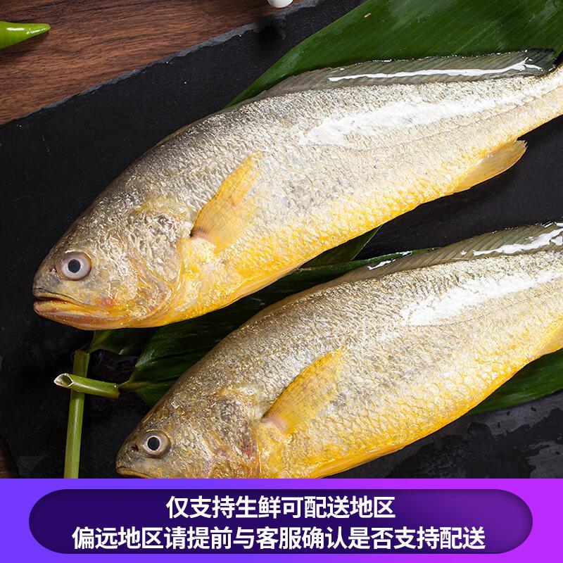 海名威 国产鲜冻黄花鱼(宁德大黄鱼)700g 2条 袋装 生鲜海鲜水产 鱼类