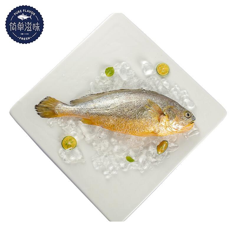 简单滋味 国产冷冻东海黄花鱼 大黄鱼 400g 单条装 肉嫩少刺 烧烤海鲜水产
