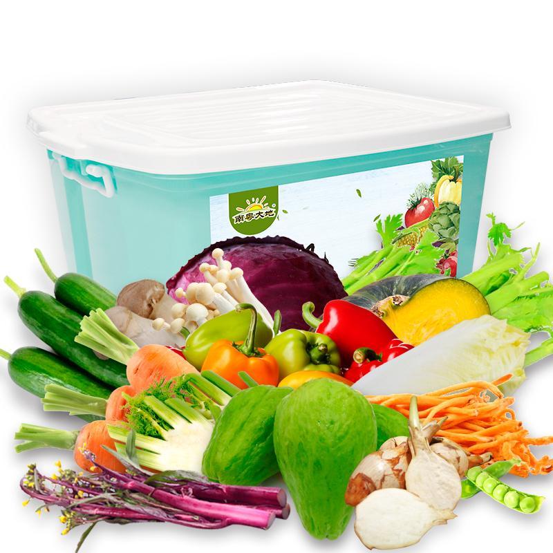南粤大地 速达佳光菜 16种 约7.0kg